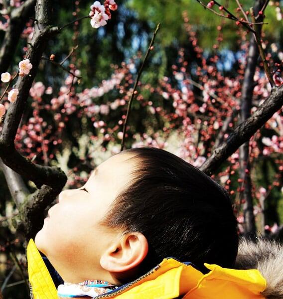 虎年春节长假我们做了些什么 让我的回忆落个脚 - 安心 - 弓长言炎